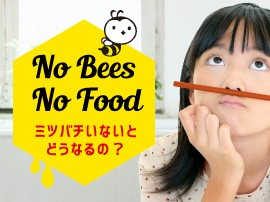 No Bee, No Food