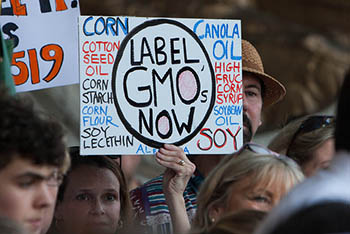 GMO-Label-CT.jpg / Flickr