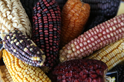 corn_mexico_1.jpg / Flickr