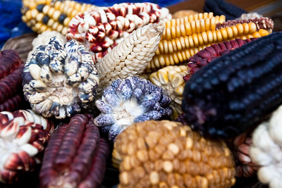 corn_peru-1.jpg / Flickr
