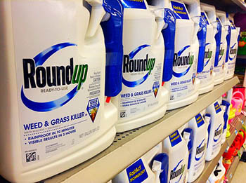roundup-mm3.jpg / Flickr
